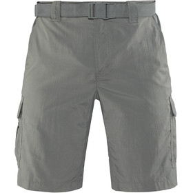 Columbia Silver Ridge II - Shorts Homme - gris